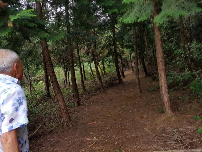 나무, 실외, 사람, 남자이(가) 표시된 사진  자동 생성된 설명